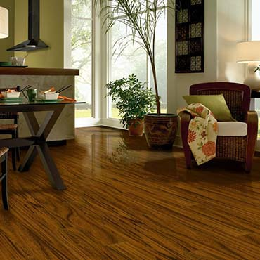 Bruce Laminate Flooring | Indian River, MI